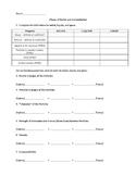 Phases of Matter worksheet