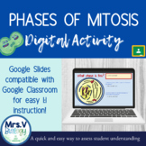 Phases of Mitosis DIGITAL Activity