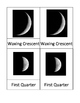 Phases of the Moon 3-Part Cards