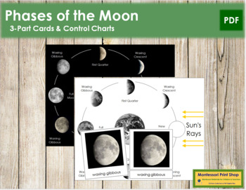 Phases of the Moon: 3-Part Cards and Charts