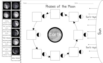 Phases of the Moon Cut and Paste by Miss Carlton | TpT