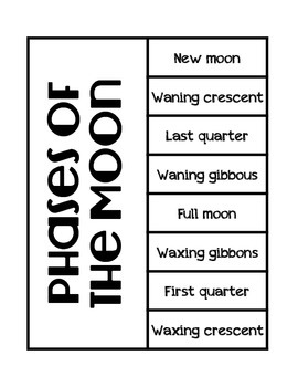 Phases of the Moon Science Interactive Foldable