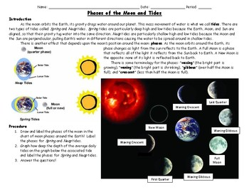 Phases of the Moon and Tides Worksheet