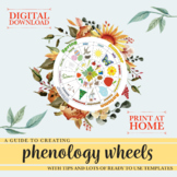 Phenology Wheel Guide & Printables - Creative Nature & Wellbeing Curriculum