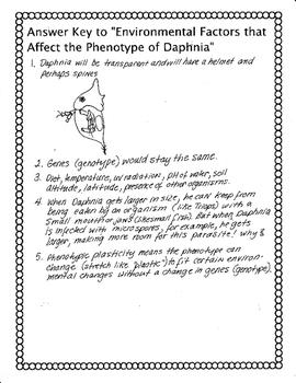 Phenotype Plasticity (in Daphnia)