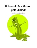 Phineas L. MacGuire Gets Slimed Novel Notebook