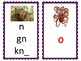 Phoneme/Grapheme Sound Spelling Cards (Dark Purple)