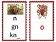 Phoneme/Grapheme Sound Spelling Cards (Dark Red)