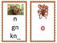 Phoneme/Grapheme Sound Spelling Cards (Orange)
