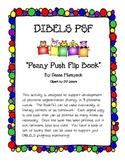 Phoneme Segmentation {Flip Book} DIBELS practice