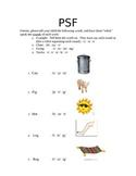 Phoneme Segmentation Fluency PSF