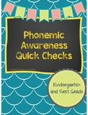 Phonemic Awareness Assessments