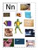 Phonemic Awareness Beginning Nn Sound Game