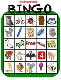Phonemic Awareness Bingo: Sound Substitution