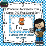Phonemic Awareness Task Cards: CVC Final Sound Set 1