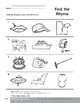 Phonemic Awareness: Words That Rhyme/Ship