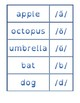 Phonemic Inventory Flash Cards