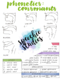 Phonetics Consonants Chart with Diagrams
