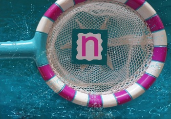 Phonic Photos: n - net