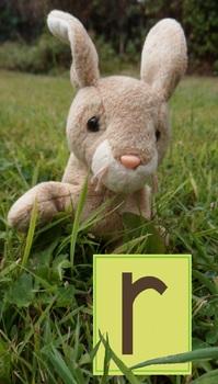 Phonic Photos: r - rabbit