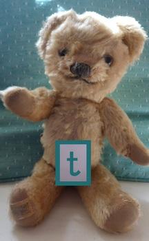 Phonic Photos: t - teddy