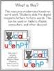 Digital Phonics Word Work Cards for Google Use