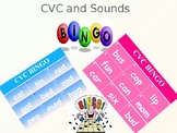 Phonics Bingo - CVC words and Sounds