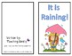 Phonics  Books for  Beginning and Struggling Readers