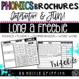 Phonics Brochure Freebie: Long a Reading Passage {a, ai, a