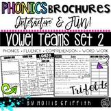 Vowel Teams Fluency Passages and Word Work SET 2: Phonics Brochures
