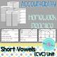 CVC word work activities