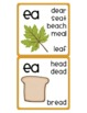 Phonics Cards - Vowels and Digraphs