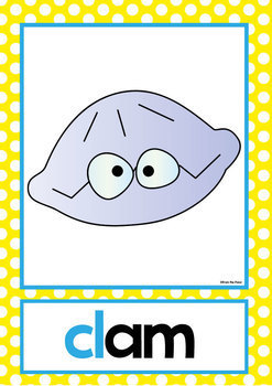 Blends Posters - Phonics - ccvc and cvcc Words