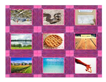 Phonics Consonant Letters f-s-k-l-p-t Photo Card Game