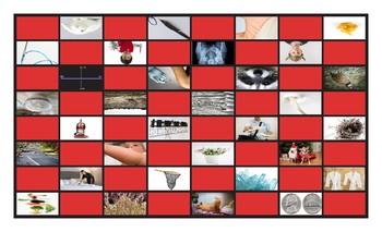 Phonics Consonant Letters m-n-q-r-v-x Photo Checkerboard Game