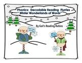 "Phonics: Decodable Reading Flurries ""Winter Wonderlands of Words"""