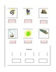 Phonics --Ending letter sound Worksheet m and p for the no