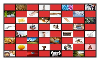 Phonics Final Consonant Clusters st-lk-sk-rk-lp-sp Photo Checkerboard Game