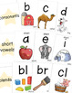 Phonics Flash Cards for Practicing Phonemes and Graphemes