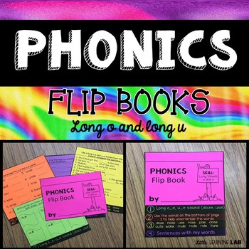 Long vowels O and U   Journeys Diary of a Spider Flip Book   Long Vowel Sounds