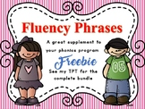 Phonics Fluency Phrases FREEBIE