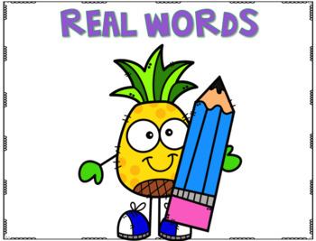 Phonics Fun - CVC & CVC-E Words