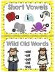 Phonics Key Word Mini Posters