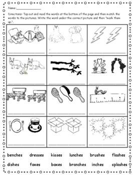 Phonics Level 1 Unit 13- suffix endings, trick words