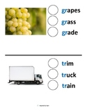 Phonics Modified Lesson for Autism