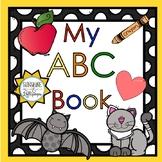 Phonics Alphabet Letters for Preschool-Kindergarten