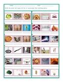 Phonics P Sound Photo Worksheet