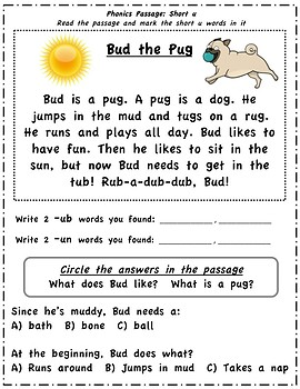 Phonics Passages Short Vowels By Animals Art And Teaching