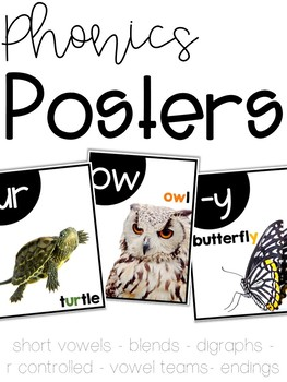 Phonics Posters (Vowels, Blends, Digraphs, R-Controlled)