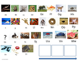 Phonics Powerpoint